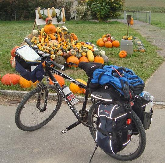 Bicycle Tours - Bicycle Near Pumpkins