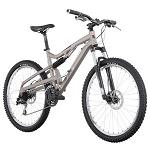 Mountain Bikes: Freeride bicycles