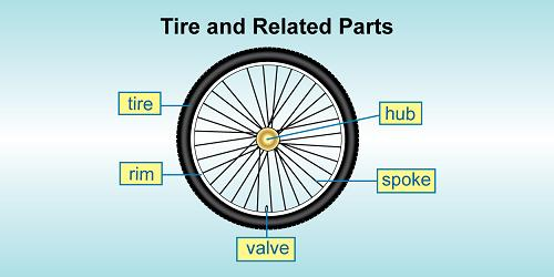 Bicycle Wheel Parts Spokes Rims And More